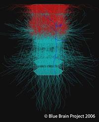 BBP_NeuroColumn2