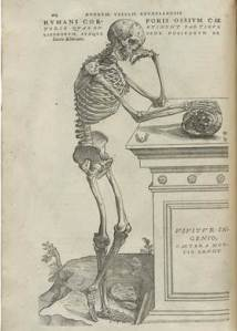 skeleton's delema