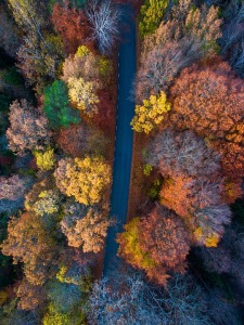aerial view of an autumn landscape