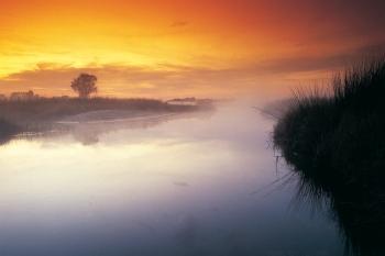 Okavango Delta Sunrise, Botswana